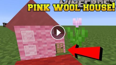 Minecraft LIVE INSIDE PINK WOOL REAL PINK WOOL HOUSE BLOCK - Minecraft hauser comand