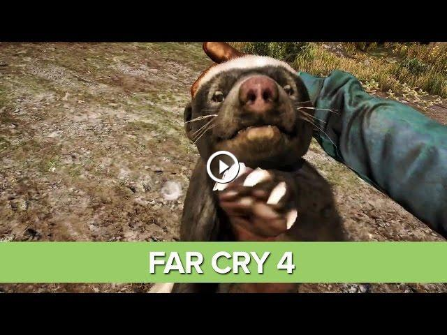 Far Cry 4 Gameplay Trailer Honey Badger Tigers Kyrati Wildlife