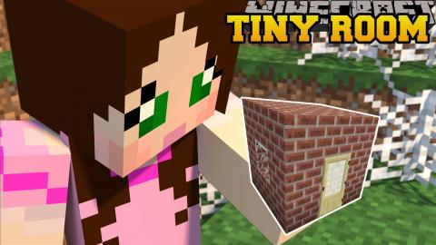 minecraft stuck in the smallest room ever find the button small rooms